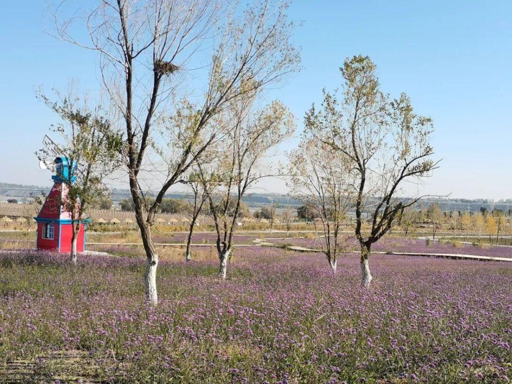 新增多处园林景观!石河子辽疆公园生态大v公园怎样ui找工作图片