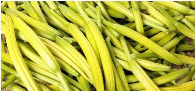 蔬菜|有几类夏季蔬菜,烹饪的时候一定要做熟