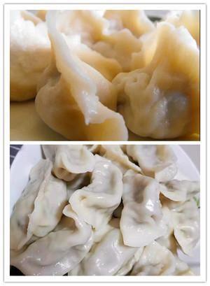 香菇|头伏饺子二伏面 饺子已出锅 防暑又解馋~营养又美味