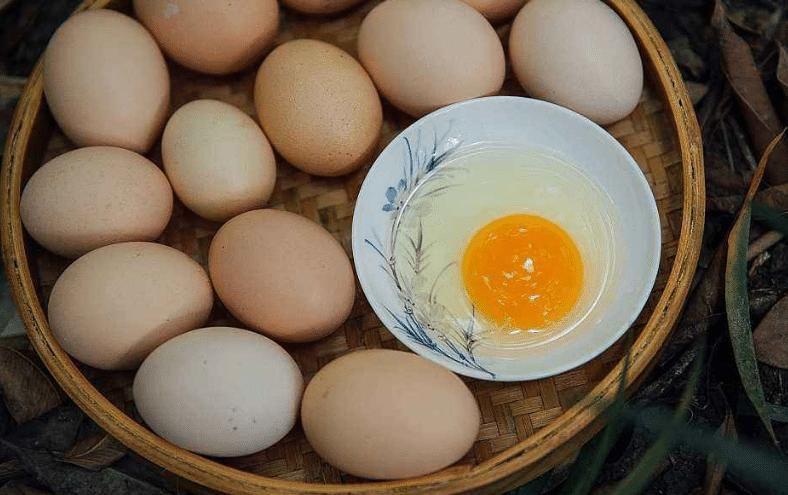 营养价值|买鸡蛋时,买白壳还是红壳的好?很多人还不知道,涨知识了!